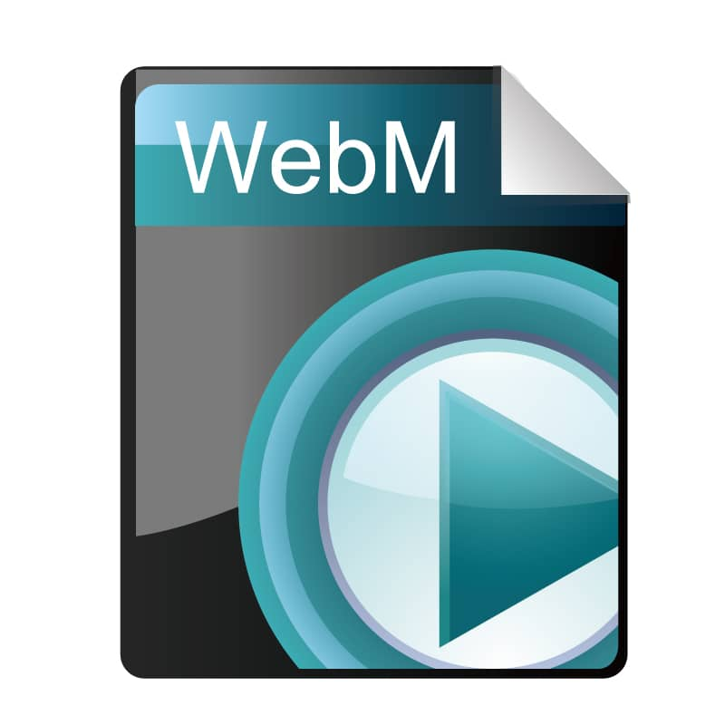 WebM(.webm)
