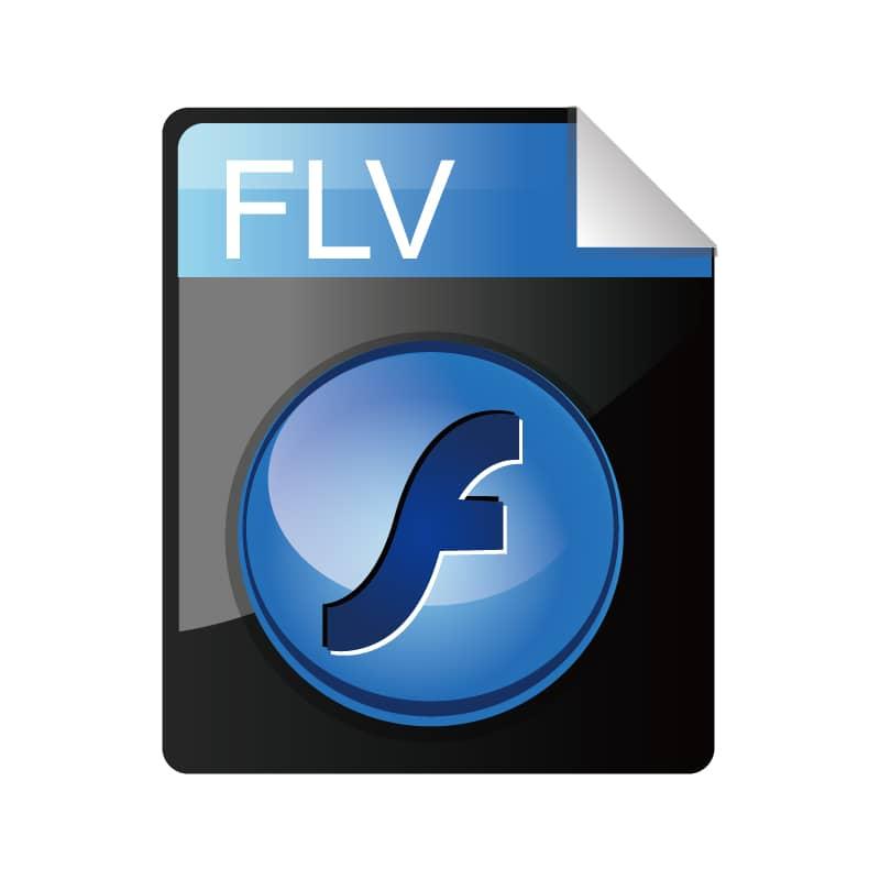 FLV(.flv)