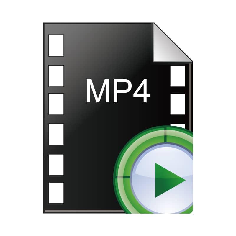 MP4(.mp4)